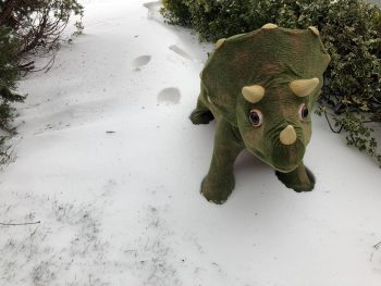 Dinosaur in snow