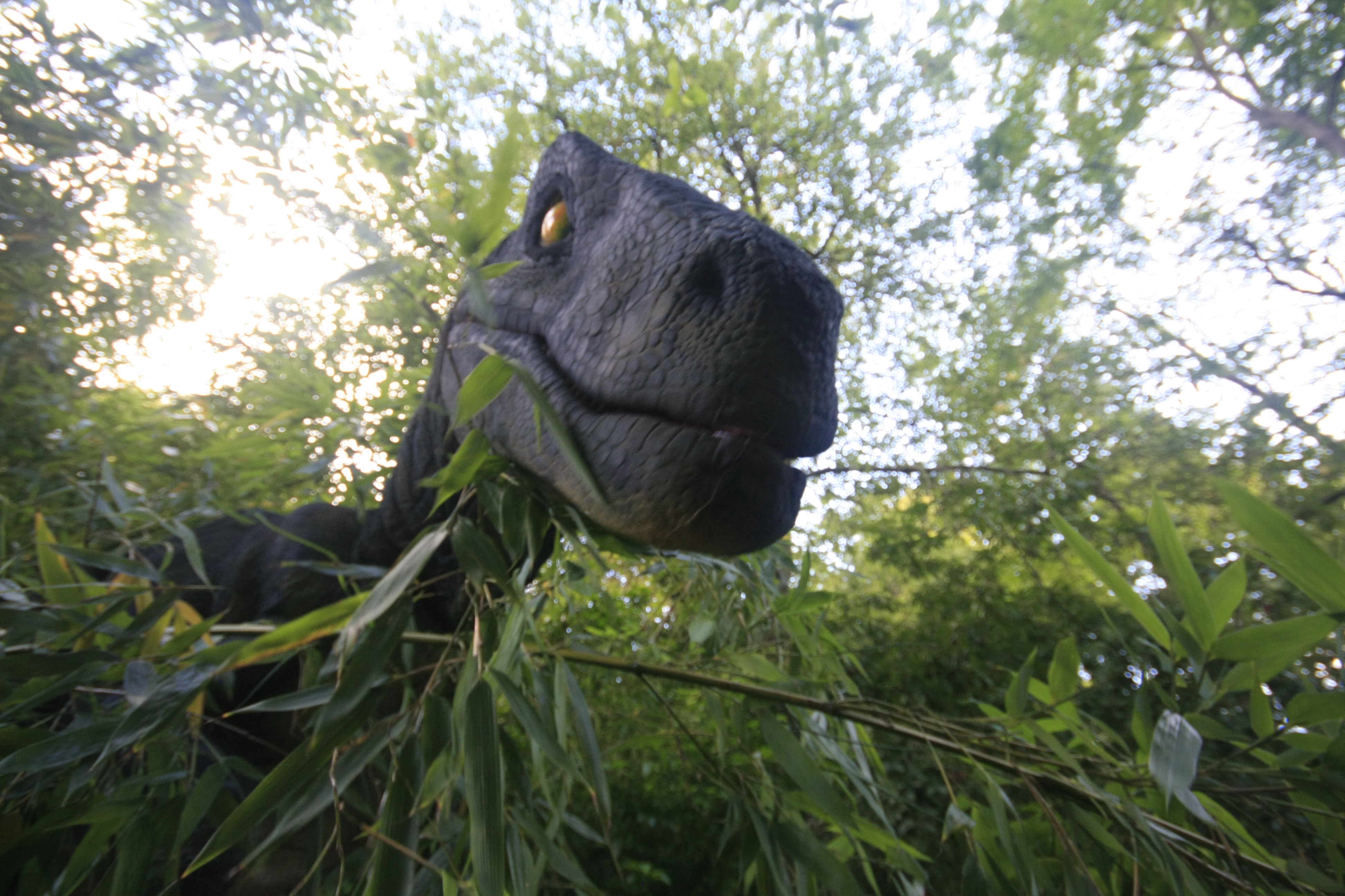 Anamatronic Velociraptor